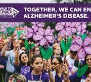 Vysnova- researches-alzheimers-disease